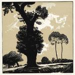 Burnot, Les deux arbres