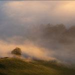 Blick vom Vogelberg – nach Sonnenaufgang