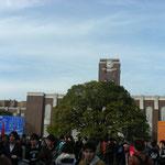 11月祭とは毎年11月末に4日間に渡って京都大学で行なわれる学園祭であり、NFという名で親しまれています。ここ時計台の周辺には多数の出店が立ち並び、クスノキ正面では様々な企画が催されています。
