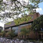 附属図書館:吉田キャンパス本部構内にある大きい図書館です。本だけではなく、1階には学生が議論できるラーニングコモンズや、3階には多くのパソコンがおいてあり、京大生なら自由に使えます。また、ここには24時間空いている学習室があり、日夜勉強している京大生もいます。