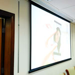 Conference room --- Invisible installation ,wall mounted. Clear voice, Ultra Less-feedback.