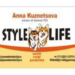 "Макет визитки для питомника корги ""Style life""."