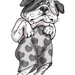 Иллюстрация для ветеринарного сайта.