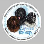Серединка розетки для монопородной выставки ньюфаундлендов в Казани.