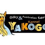 Логотип для питомника австралийских и силки терьеров.