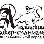 Проект логотипа для Национального спаниель-клуба.