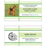 Макет двусторонней визитки для собаки и хозяйки. Два в одном флаконе).