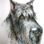 Портрет этой замечательной собаки был сделан посмертно по фотографиям. Такие работы бесконечно трогают моё сердце. Это акварель формата А2.
