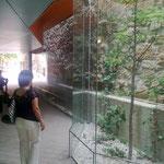 Auch in den früher düsteren Durchgängen findet man jetzt Licht, Glas und sogar Pflanzen.