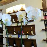 Punto associativo ArTre  Bobbio - Moizo & Scotti - Vini dal 1892  Contrada di Porta Nova 22/A. 29022 Bobbio Piacenza  Azienda vitivinicola   Aperto tutti i giorni dalle 9.00 alle 12.30 e dalle 16.00 alle 19.00.  Giorno di chiusura: giovedì.