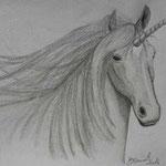 Unicorno. Matita su cartoncino  di Barbara Carminati