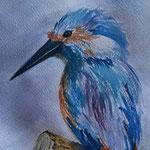 Il Martin pescatore - acquarello  di Barbara Carminati
