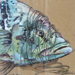 Pappfisch XIII, 19/19 cm, 2017