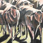 Schafe, nach Hause, 100/100 cm, 2007