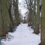 Kaimen - Тростники памятник 1 Мировой войне у кирхи 2009 г.
