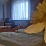 Pension Doppelzimmer #5