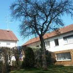 Gartenansicht auf das Haupthaus mit Gaststätte (Pension-links) und die Handwerkerwohnung (rechts)