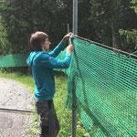 Netze hängen Forststraße Stierloch