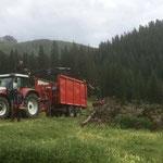 Aufräumarbeiten im Forst, Zugertal