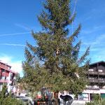 Christbaum stellen in Zürs, Kreisverkehr
