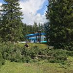 Erste Forstarbeiten für Neubau Schwimmbad