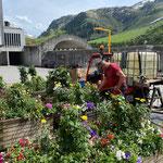 Blumentröge wässern am Bauhof