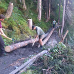 Lechweg-Instandsetzung: Einbau der Brückenträger