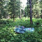 Dubiosen verlassenen Campingplatz Hoher Bühl Zug räumen und Müll entsorgen