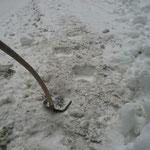 Winterwanderwege auf Begehbarkeit kontrollieren