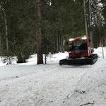 Snow Rabbit 3 am Tannberg - Weg