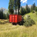 Forstarbeiten Zugertal