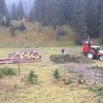 Forstarbeiten Spullerwald, aufräumen