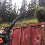 Grünschnitt einfassen am Bauhof