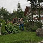 Rasenpflege Omesberg-Insel