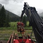 Grillholz aus Pflanzgarten holen