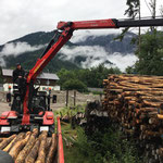 Robinienholz abholen bei der Lawinen- und Wildbach in Vandans