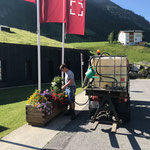 Blumenpflege beim sport.park.lech