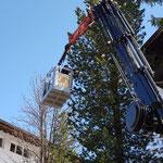 Christbaumkugeln abmontieren