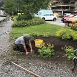 Gärtnerarbeiten beim Gemeindeamtparkplatz