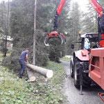 Baumstämme vorbereiten für Brücke Liftzufahrt Feuerwehrhaus