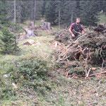 Aufräumarbeiten im Forst