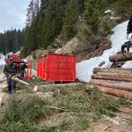 Forstarbeiten Straße Richtung Warth...