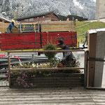 Blumenschmuck: Tröge leeren