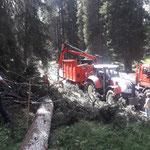 Forstarbeiten im Spullerwald