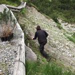Latschen setzen gegenüber dem Heizwerk Lech