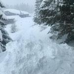 Winterwanderweg Goldener Berg-Bergbahn Oberlech, Präparation mit Snow Rabbit 3 nach Hangrutschung