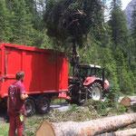 Forstarbeiten im Zugertal, mit Traktor Steyr 6190 CVT