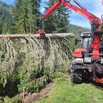 Forstarbeiten Chalberläger