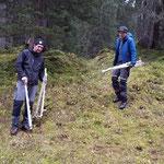 Schonungen ablegen Spullerwald, Engerle Wald
