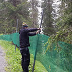 Netze hängen
